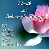 Musik zur Schmerzlinderung - New Age Songs abzuwehren Angst, Stress, Wut und Nervosität von Various Artists