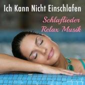 Ich Kann Nicht Einschlafen: Schlaflieder und Relax Musik mit Homöopathische Musik für den Frieden, Gelassenheit und Ruhe von Various Artists