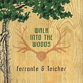 Walk Into The Woods by Ferrante and Teicher