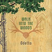Walk Into The Woods by Odetta