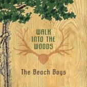 Walk Into The Woods di The Beach Boys