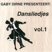 Dansliedjes, Vol. 1 by Various Artists