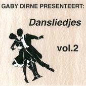Dansliedjes, Vol. 2 by Various Artists