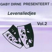 Levensliedjes, Vol. 2 by Various Artists