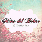 Mitos del Bolero - 25 Grandes Éxitos von Various Artists