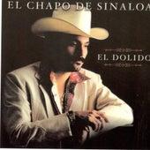 El Dolido de El Chapo De Sinaloa