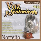 Voz y Sentimiento Norteno, Vol. 6 by Various Artists