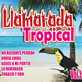 Llamarada Tropical, Vol. 1 de Various Artists
