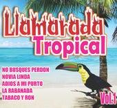 Llamarada Tropical, Vol. 1 by Various Artists