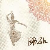 Baba Zula Box Set de Baba Zula