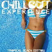 Chillout Experience von Various Artists