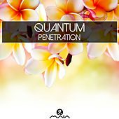 Penetration by Various Artists