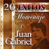 Homenaje A Juan Gabriel by Juan Gabriel
