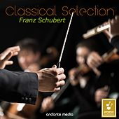 Classical Selection - Schubert: Symphonies Nos. 1 & 2 by Philharmonia Hungarica