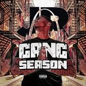 Gang Season by J.R.