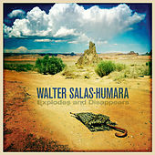 Explodes and Disappears by Walter Salas-Humara