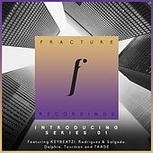 Fracture Recordings Introducing Series 01 - Single by Various Artists