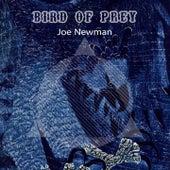 Bird Of Prey by Joe Newman