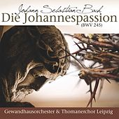 Die Johannespassion by Various Artists