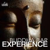 Buddha Bar Experience by Francesco Digilio