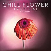 Chill Flower Tropical Essential de Various Artists