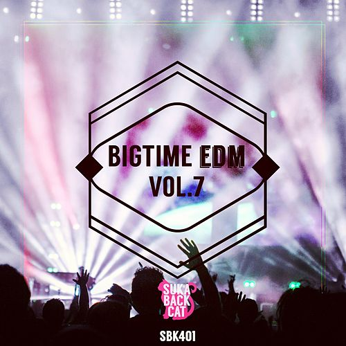 Bigtime EDM, Vol. 7 by Various Artists