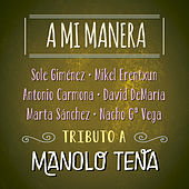 A Mi Manera. Tributo a Manolo Tena by Various Artists