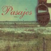Esencia y Estilo: Pasajes, Vol. 1 de Various Artists