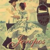Esencia y Estilo: Joropos, Vol. 1 de Various Artists