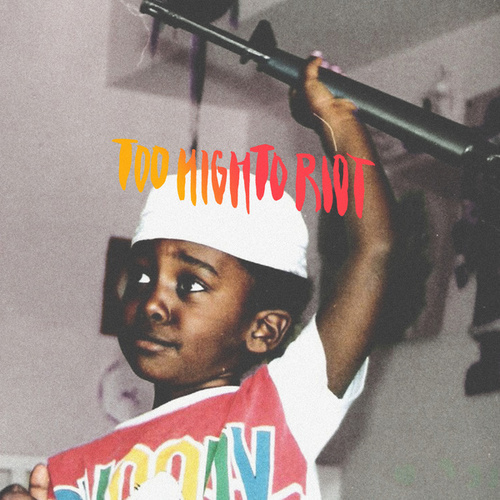 Too High To Riot by Bas