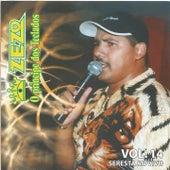 Seresta, Vol. 14 (Ao Vivo) von Zezo
