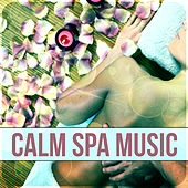 Calm Spa Music -Massage, Serenity, Wellness, Nature Sounds, Sea Waves, Yoga & Sauna, Relaxation Music to Help You Relax, Music Therapy by S.P.A