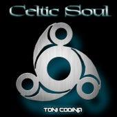 Celtic Soul by Toni Codina