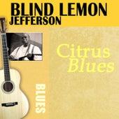 Citrus Blues by Blind Lemon Jefferson