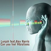 Can You Feel Vibrations (feat. Alex Harris) von Lunjha