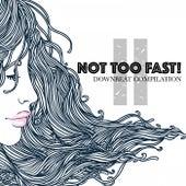 Not Too Fast! 2: Downbeat Compilation de Various Artists