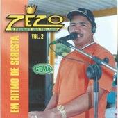 Em Ritmo de Seresta, Vol. 2 von Zezo