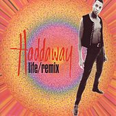 Life / Remix by Haddaway