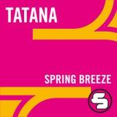 Spring Breeze by DJ Tatana