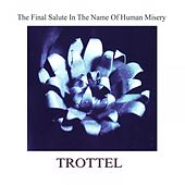 The Final Salute in the Name of Human Misery by Trottel