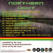 Northern Light de Various Artists