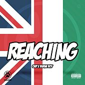 Reaching by Chip
