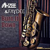 Burn It Down Radio Edit von Ahzee