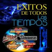 Exitos De Todos Los Tiempos by Various Artists