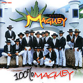100% Maguey de Banda Maguey