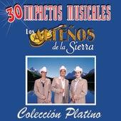 30 Impactos Musicales by Los Altenos De La Sierra (1)