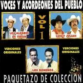 Paquetazo De Coleccion - Voces Y Acordeones Del Pueblo, Versiones Originales de Various Artists