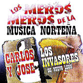 Los Meros, Meros De La Musica Nortena by Various Artists