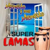 Meneito y Mas Meneito by Super Lamas