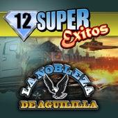 12 Super Exitos by La Nobleza De Aguililla